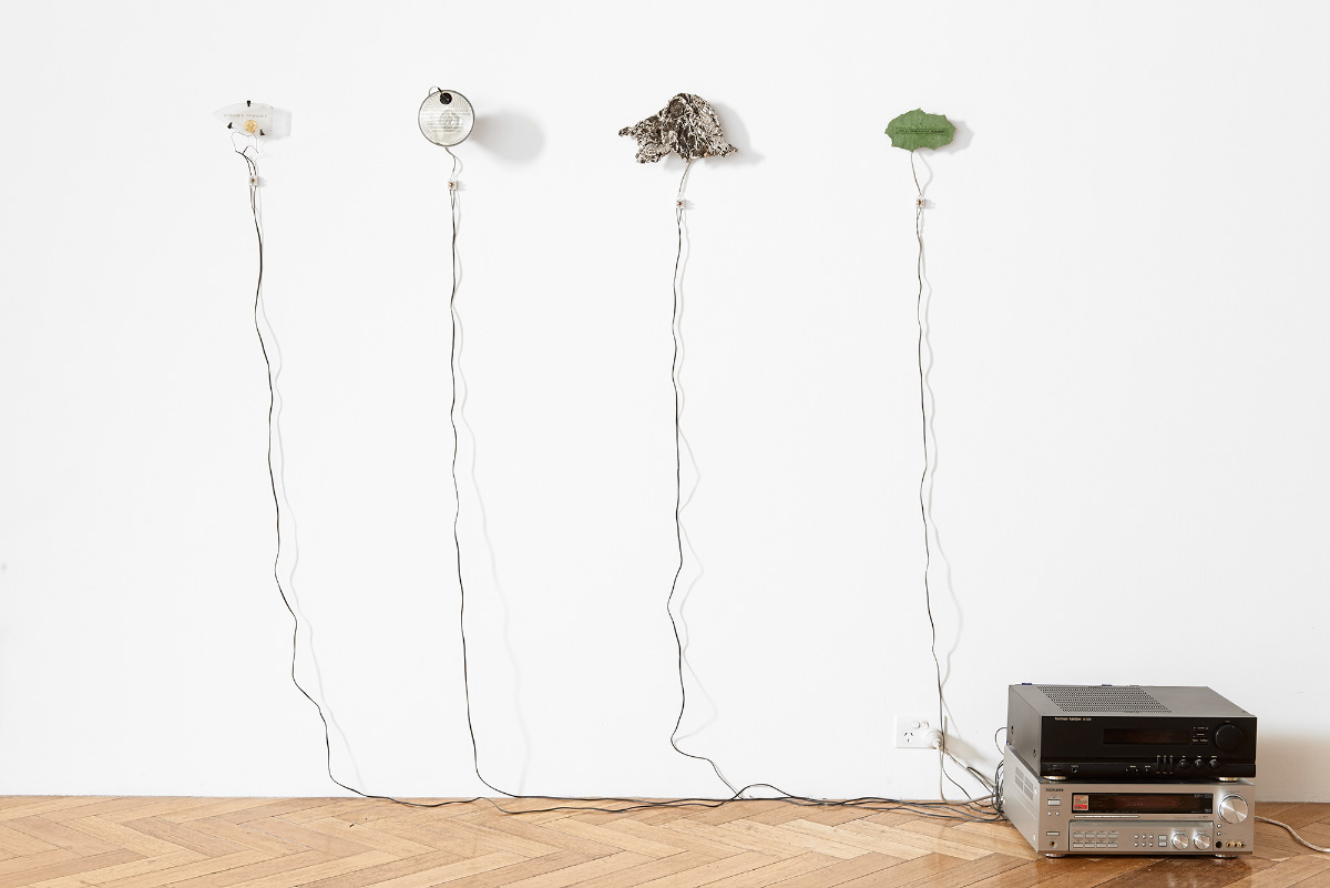 Mark Brown, Field Fragments / Detritical Zone, 2009-2011