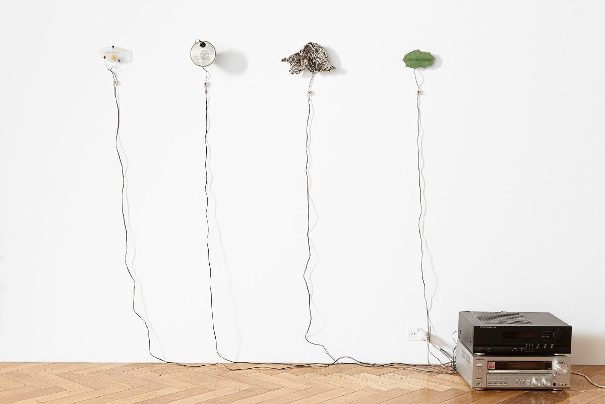 Mark Brown, Field Fragments / Detritical Zone, 2009-2011